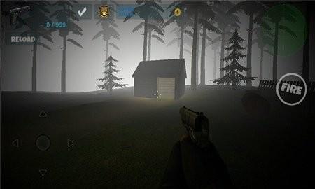 神秘的诅咒森林